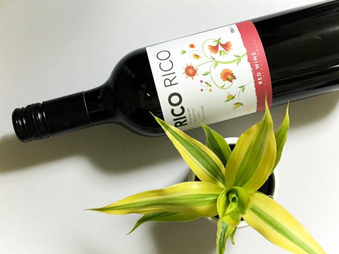 カインズのワンコインワインと観葉植物
